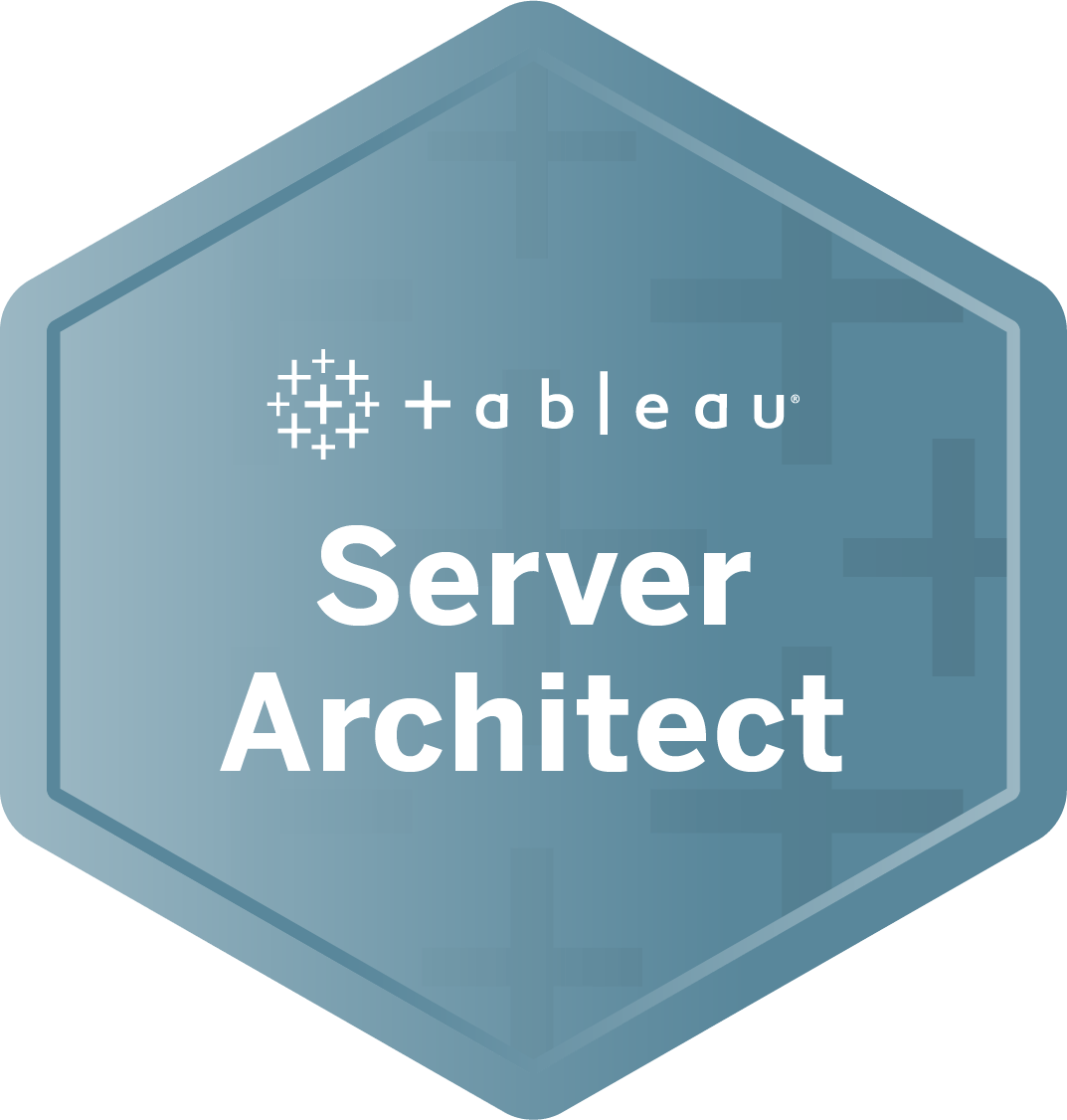 Server Architect badge